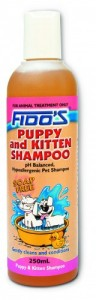 fidos puppy and kitten NEW  flat transparent shadow