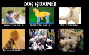 Dog Groomer Meme